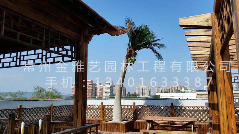 北京市八一中学屋顶花园2