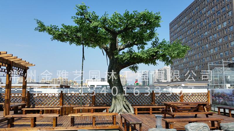 北京市八一中学屋顶花园5