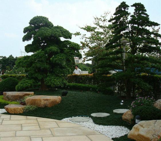 现代庭院2