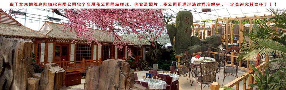 生态餐厅 公园