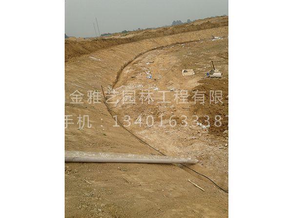 水系驳岸施工现场 (3)