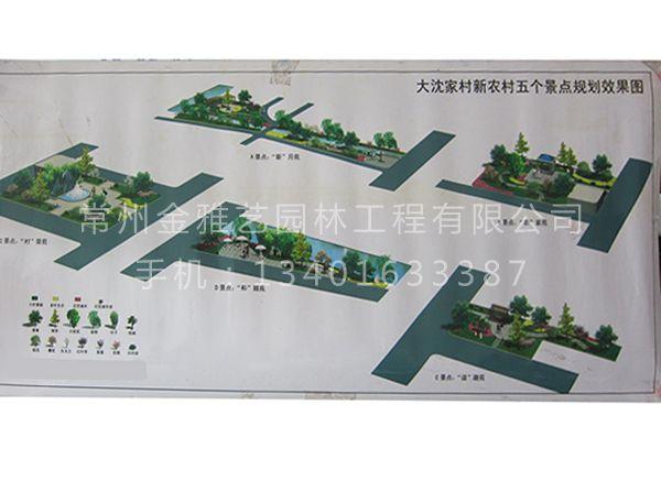 园林景观绿化 (25)