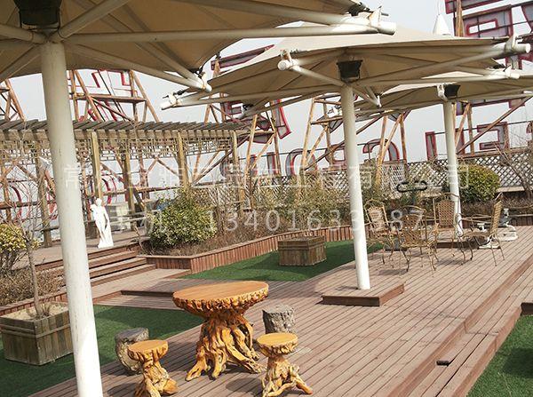 空中屋顶花园 (3)