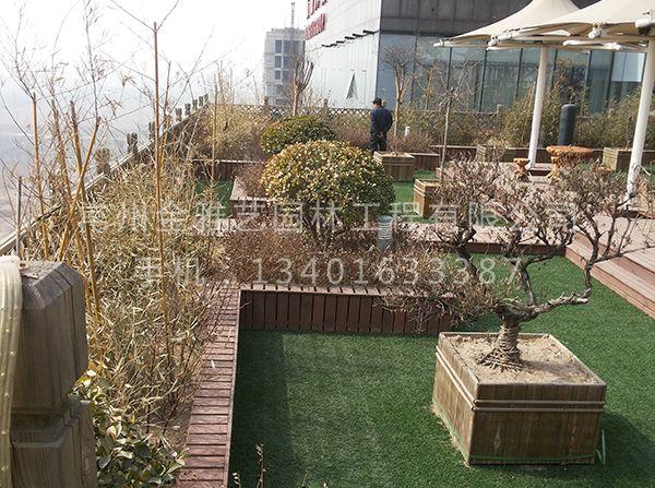 空中屋顶花园 (5)