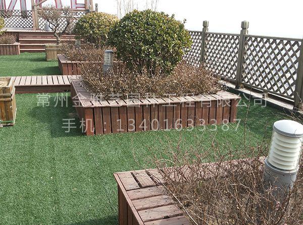 空中屋顶花园 (4)