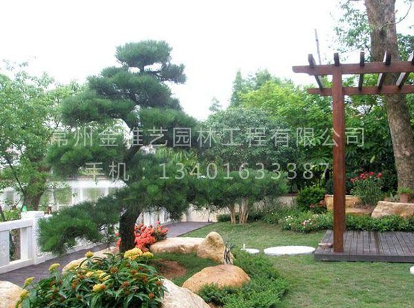 私家花园 (6)